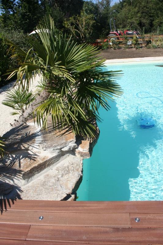 piscine avec ponton bois. Black Bedroom Furniture Sets. Home Design Ideas
